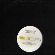divine-styler-feat-the-scheme-team-tongue-of-labyrinth-vinyl