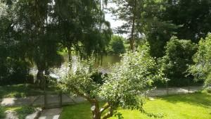 Pronájem chata u vody, Jesenická přehrada, zahrada, voda, Jesenice. Koupaní přehradě 10 metrů od hranice pozemku voda.